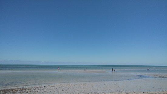 Crandon Park Beach: La playa 1