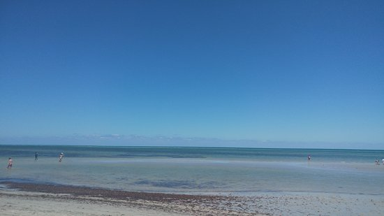 Crandon Park Beach: La Playa 2