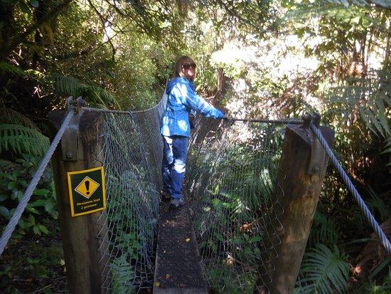 Egmont National Park照片