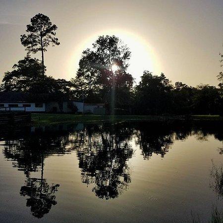 Bonifay, FL: Beautiful sunset at Outback Springs RV Park