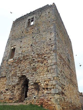 Semur-en-Brionnais, Francja: Château Saint Hugues mai 2018