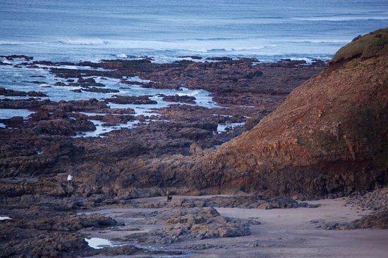 Ocean Haven Yachats Oregon Beach At Low Tide