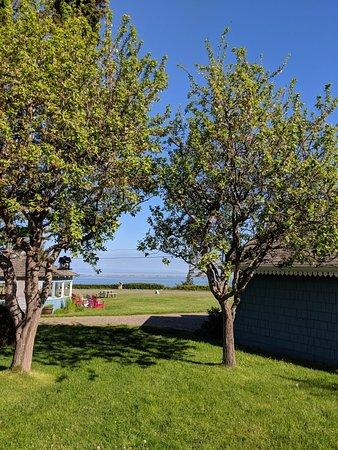 Juan de Fuca Cottages: IMG_20180505_091442_large.jpg
