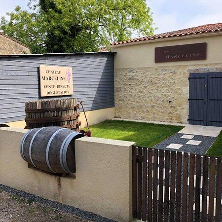 Saint Estephe, ฝรั่งเศส: Château Marceline