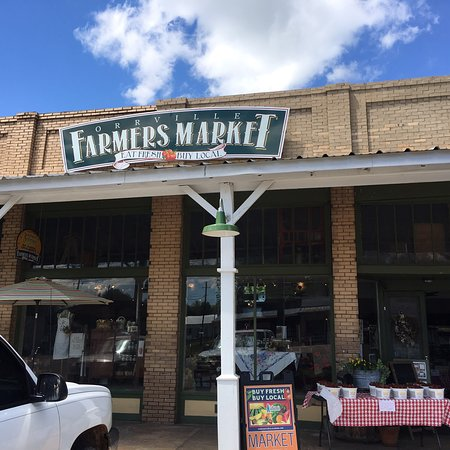 Orrville, AL: Great stop with food, gifts