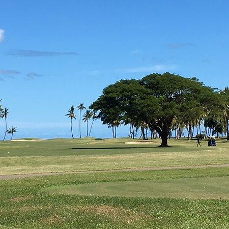 Denarau Golf and Racquet Club-bild