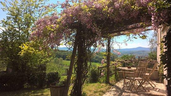 Montecastrilli 사진