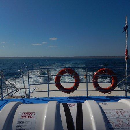 Ningaloo Blue Dive: photo1.jpg