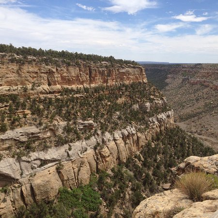 Mesa Verde Colorado: photo1.jpg