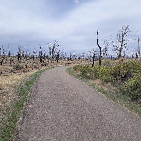 Mesa Verde Colorado: photo2.jpg