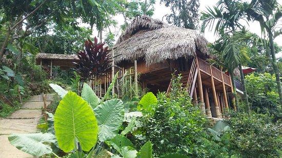 Vietnam Hidden Charm Tours: Vietnam Travel
