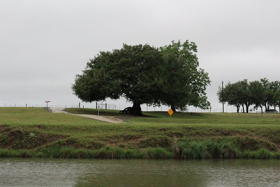 Stonewall, TX: The Pedernales River.....literally a 5 minute walk away.