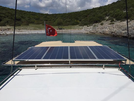 Our new solar panel for 24 hours 220 volt electricity - Picture of ...