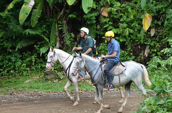 Horseback Riding Tour from Manuel...