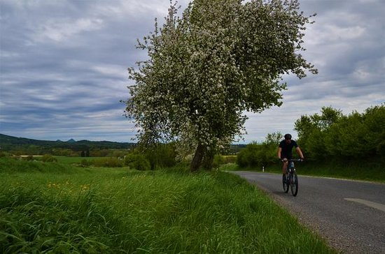 Bohemian Paradise Bike Tour of the...