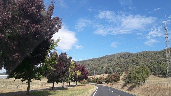 Mount Beauty, أستراليا: 20180410_111557_large.jpg