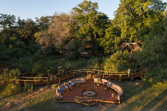 Camp moremi updated 2018 prices lodge reviews moremi game all photos 326 326 gumiabroncs Images