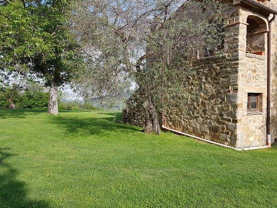Agriturismo Antico Casale Pozzuolo: 20180510_085814_large.jpg