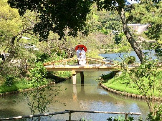 Sankeien Gardens: Wedding photos?