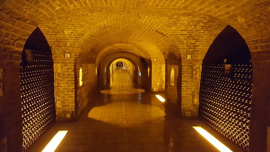‪Moet et Chandon Champagne Cellars‬