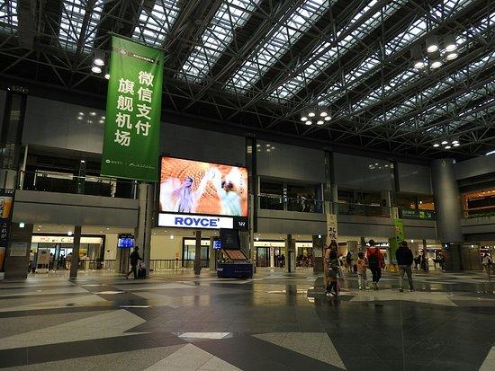 International Terminal Oasis Park