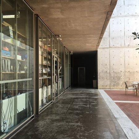 Salk Institute: photo3.jpg