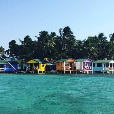 Tobacco Caye Paradise照片