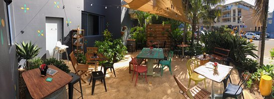 Collaroy Beach, Australia: Courtyard
