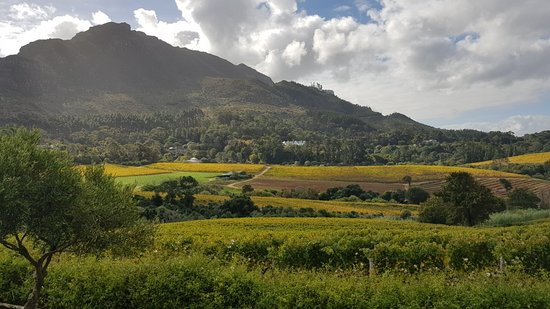 Constantia, South Africa: 20180509_140258_large.jpg