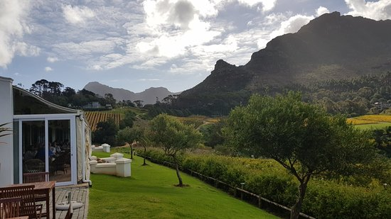 Constantia, South Africa: 20180509_140305_large.jpg