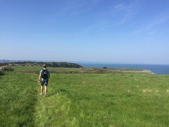 Caldey Island照片