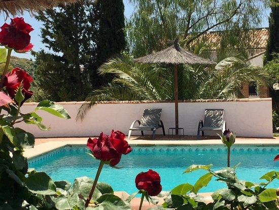 Cortijo valverde bewertungen fotos preisvergleich for Swimming pool preisvergleich