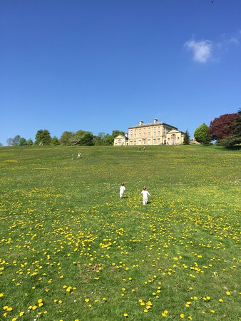 "Cusworth Hall: ""C'mon, that's mummy and daddy!"""