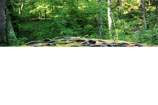 Gebiusskiye Waterfalls: Гебиусские водопады