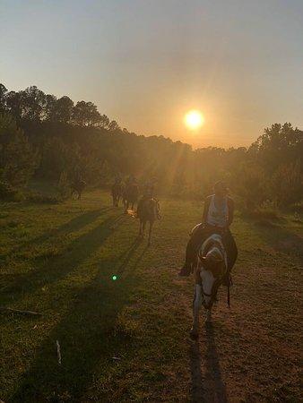 Griffin, GA: Riding at sunset.
