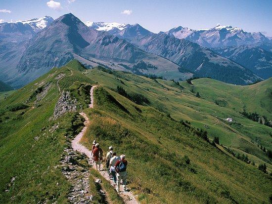 Cantón de Zúrich, Suiza: Walking up the hill