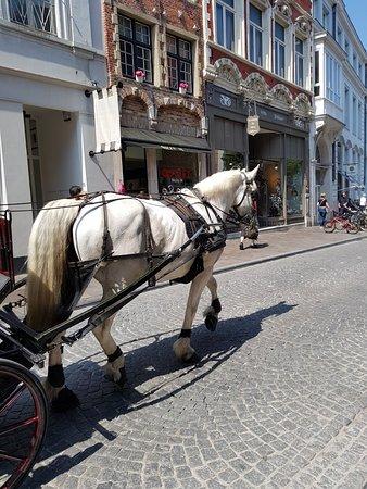 Hotel Ter Duinen: 20180509_125249_large.jpg