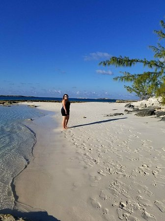 Exuma Water Tours - Four C's Adventures: iguana island