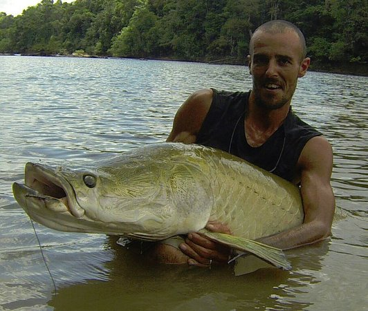 Arapaima Picture Of Adventure Guianas Private Day Tours Georgetown Tripadvisor