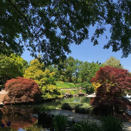 Picture of lewis ginter botanical garden richmond tripadvisor for Lewis ginter botanical gardens christmas