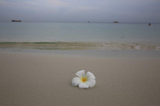 Provinz Rayong, Thailand: Serenity