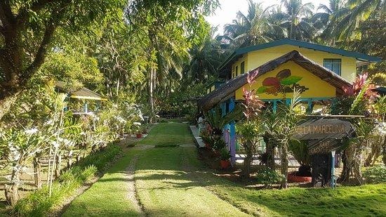 Atimonan, Филиппины: Villa Marcelina RAAT Cacao Farm