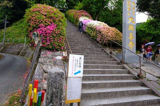 Kiyama-cho, اليابان: 石段下には杖の用意も