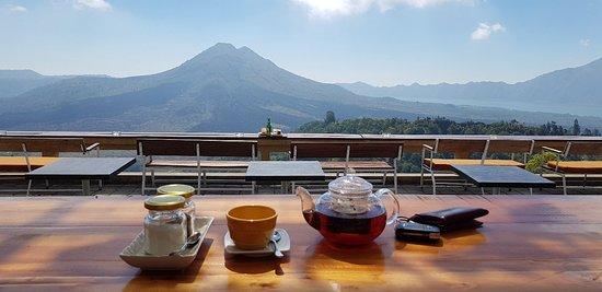 Nice place - Picture of Kintamani Coffee - eco BIKe coffee - Tripadvisor