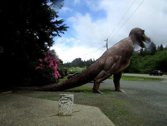 Prehistoric Gardens: Hope he don't see us