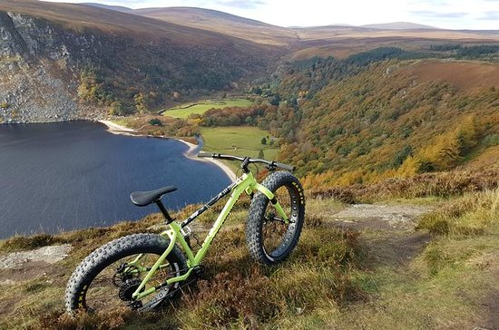 Wicklow Ballinastoe - Half Day Bike...