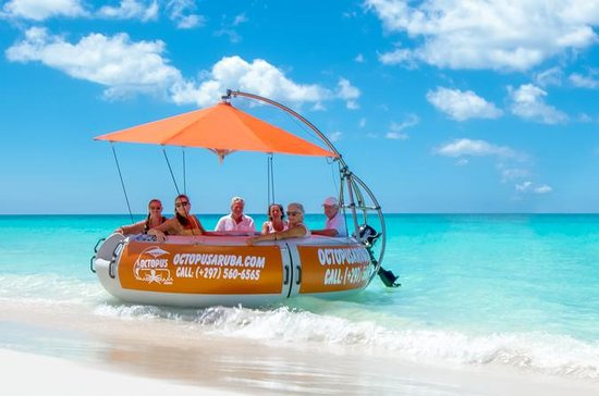 Aqua Donut Private Boat