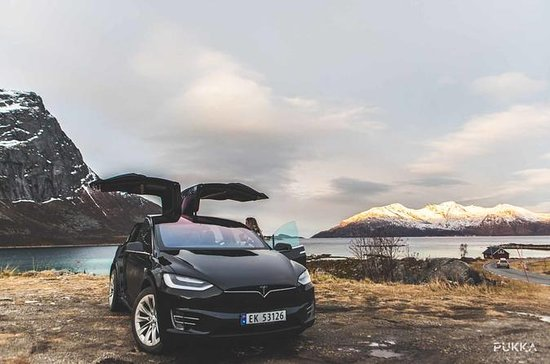 Tesla x Fjord Sightseeing Adventure...