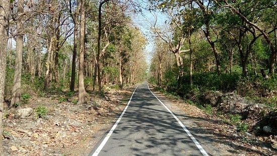 Ramnagar照片