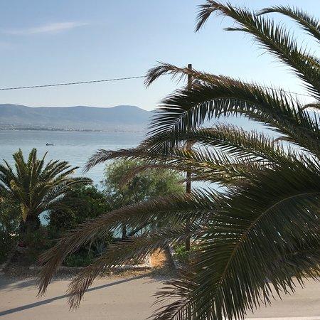 Arbanija, Croatia: photo1.jpg
